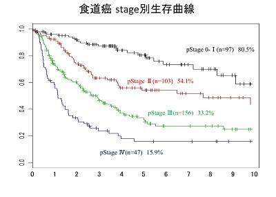 syokudou-stage1-sseizon